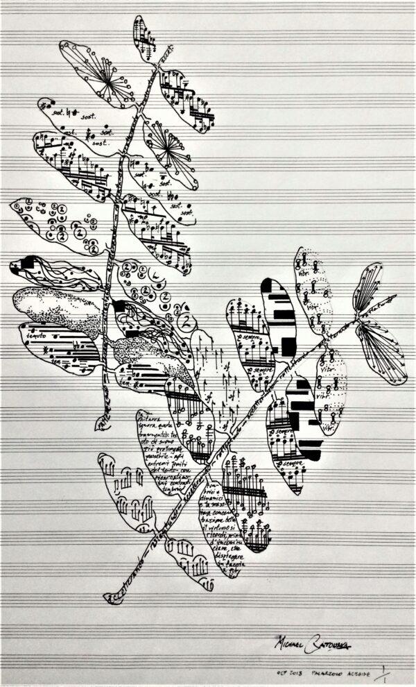 Leaf score: european ash